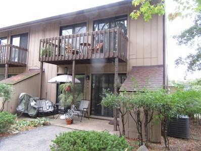 62 Aspen Colony UNIT 5, Fox Lake, IL 60020 - #: 10309146