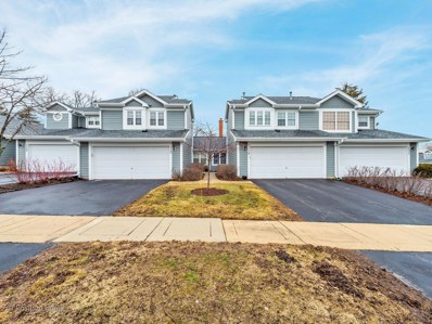 119 Sarahs Grove Lane UNIT 40-4C, Schaumburg, IL 60193 - #: 10309883