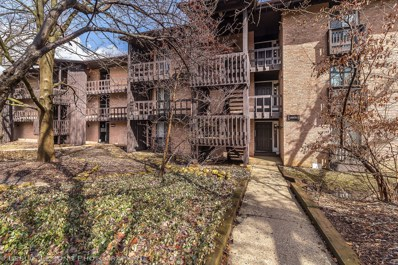 5605 Lakeside Drive UNIT 3E, Lisle, IL 60532 - #: 10309914