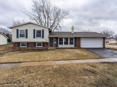 8129 N Applewood Court, Hanover Park, IL 60133 - #: 10310292
