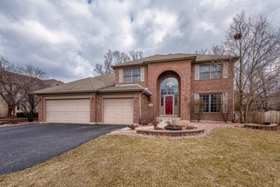 16929 Arbor Creek Drive, Plainfield, IL 60586 - #: 10310536