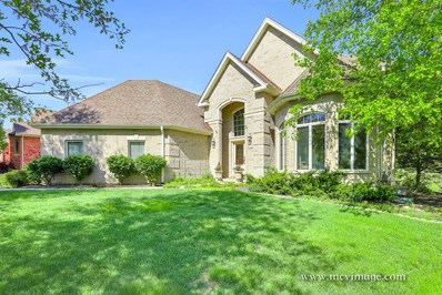 16229 Wildwood Lane, Homer Glen, IL 60491 - #: 10311405