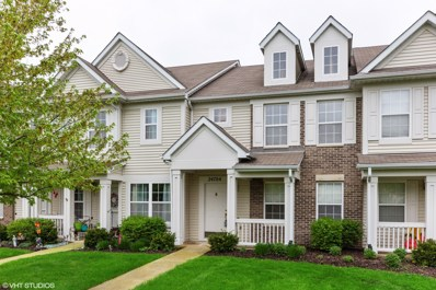 24704 George Washington Drive, Plainfield, IL 60544 - #: 10311561