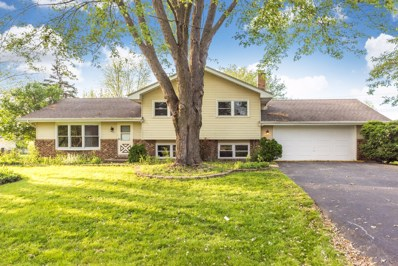 28W744  Wagner, Naperville, IL 60564 - #: 10311789