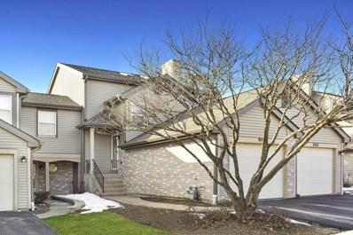 980 Butter Creek Court UNIT 980, Hoffman Estates, IL 60169 - #: 10312020
