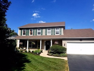 5084 Switch Grass Lane, Naperville, IL 60564 - #: 10312574