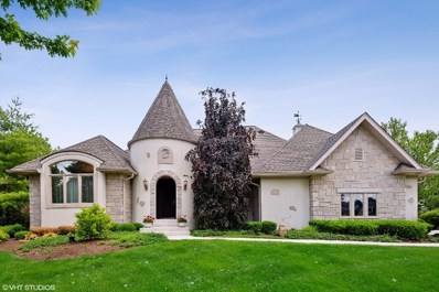 8506 Trevino Way, Lakewood, IL 60014 - #: 10313148
