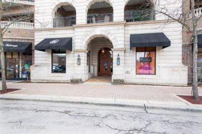 151 Wing Street UNIT 506, Arlington Heights, IL 60005 - #: 10313194