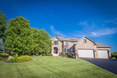 5410 Fox Sedge Court, Oswego, IL 60543 - MLS#: 10313864
