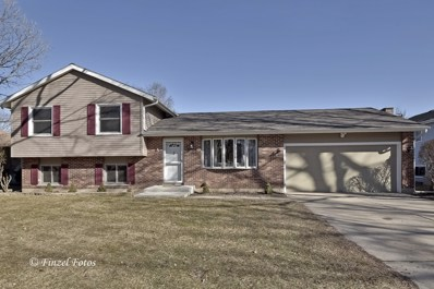 5302 Abbey Drive, Mchenry, IL 60050 - #: 10314176