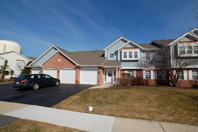217 Winnsboro Court UNIT D, Schaumburg, IL 60193 - #: 10314341