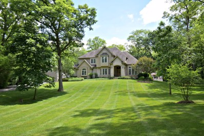 116 S Valley Hill Road, Bull Valley, IL 60098 - #: 10314373