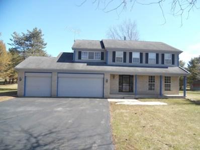 9802 Bonner Lane, Spring Grove, IL 60081 - #: 10314385