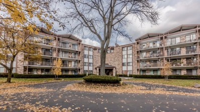 250 W Parliament Place UNIT U316, Mount Prospect, IL 60056 - #: 10315071