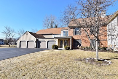 317 Dunham Place Commons UNIT 317, St. Charles, IL 60174 - MLS#: 10315324