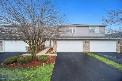 19617 Cambridge Drive, Mokena, IL 60448 - #: 10315860