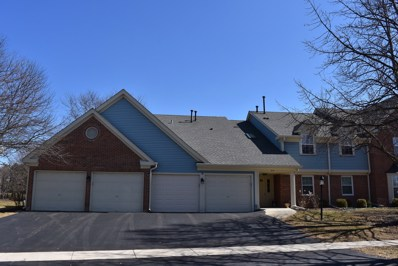 25 Ashburn Court UNIT W-1, Schaumburg, IL 60193 - #: 10316143