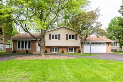 5820 Katrine Avenue, Downers Grove, IL 60516 - #: 10316674