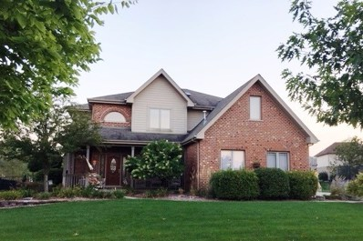 8621 Shire Court, Frankfort, IL 60423 - #: 10316821
