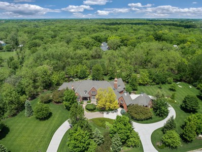 65 Stirrup Cup Court, St. Charles, IL 60174 - #: 10317392