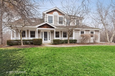 1644 Churchill Court, Green Oaks, IL 60048 - #: 10317575