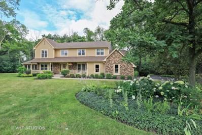 1738 White Fence Lane, Green Oaks, IL 60048 - #: 10317578