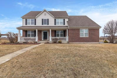 13722 Meadow Lane, Plainfield, IL 60544 - #: 10317814