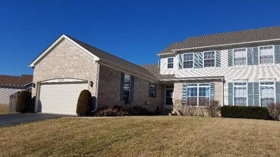25252 Shady Glen Drive, Channahon, IL 60410 - #: 10318276
