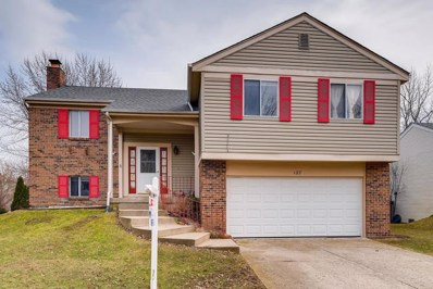 127 Midway Lane, Vernon Hills, IL 60061 - #: 10318792