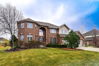 22981 Lakeview Estates Boulevard, Frankfort, IL 60423 - #: 10319151