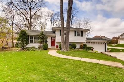 5900 Leonard Avenue, Downers Grove, IL 60516 - #: 10319328