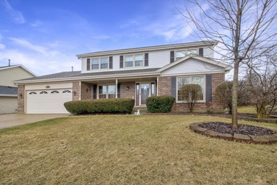 1313 South Point Court, Schaumburg, IL 60193 - #: 10319622