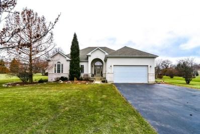17115 Fieldstone Drive, Marengo, IL 60152 - #: 10319652