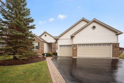13167 Stone Creek Court, Huntley, IL 60142 - #: 10319705