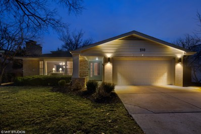 210 51st Place, Western Springs, IL 60558 - #: 10320151