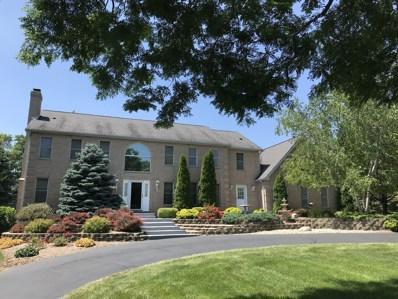 6905 Prairie Drive, Spring Grove, IL 60081 - #: 10320624