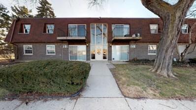 825 Grove Drive UNIT 215-6, Buffalo Grove, IL 60089 - #: 10320922