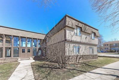 125 E Mill Street UNIT 103, Wauconda, IL 60084 - #: 10321060