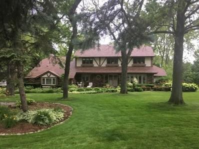 1 Sunnyslope Road, Palos Park, IL 60464 - #: 10321354