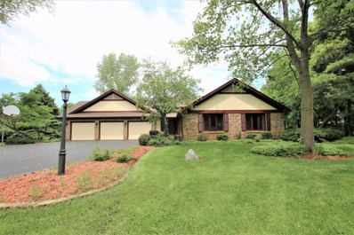 18N509  Sleepy Hollow, Dundee, IL 60118 - #: 10321675