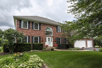 23921 Deer Chase Lane, Naperville, IL 60564 - #: 10322303