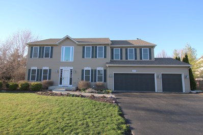 3610 Wintergreen Terrace, Algonquin, IL 60102 - #: 10322324