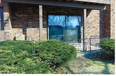 22637 Pleasant Drive UNIT 4, Richton Park, IL 60471 - #: 10322405
