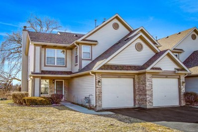 1782 Nature Court, Schaumburg, IL 60193 - #: 10322562
