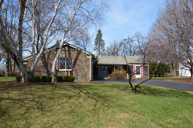 156 Hilltop Lane, Sleepy Hollow, IL 60118 - #: 10323193