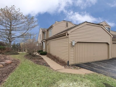 2368 Oak Hill Road UNIT 1053, Lake Barrington, IL 60010 - #: 10323522