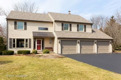 10005 Spring Dale Drive, Spring Grove, IL 60081 - #: 10323922