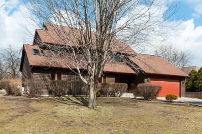 7820 E Arrowleaf Trail, Coal City, IL 60416 - #: 10324182