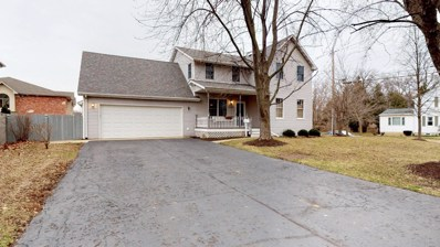419 N Cedar Road, New Lenox, IL 60451 - #: 10324695