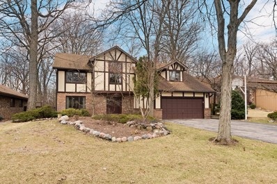 410 Hiawatha Trail, Wood Dale, IL 60191 - #: 10324725
